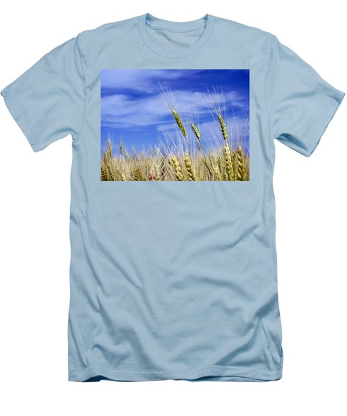 Men's T-Shirt (Slim Fit) featuring the photograph Wheat Trio by Keith Armstrong