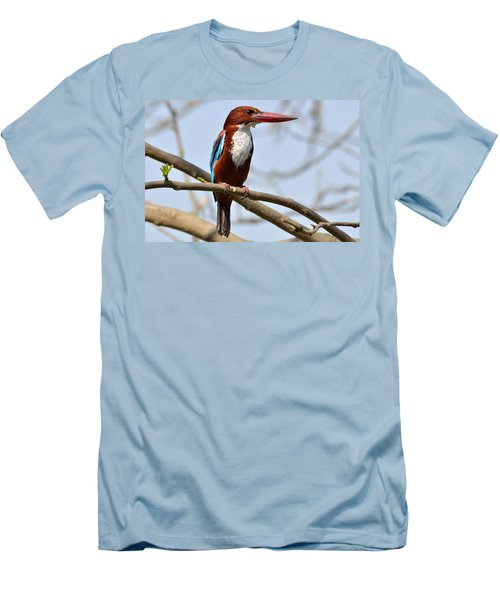 White Breasted Kingfisher Men's T-Shirt (Slim Fit) by Fotosas Photography