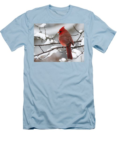 Winter In Red Men's T-Shirt (Athletic Fit)