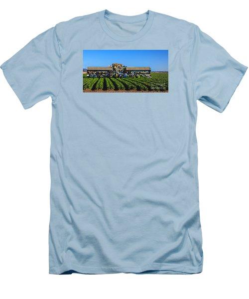 Winter Lettuce Harvest Men's T-Shirt (Slim Fit) by Robert Bales