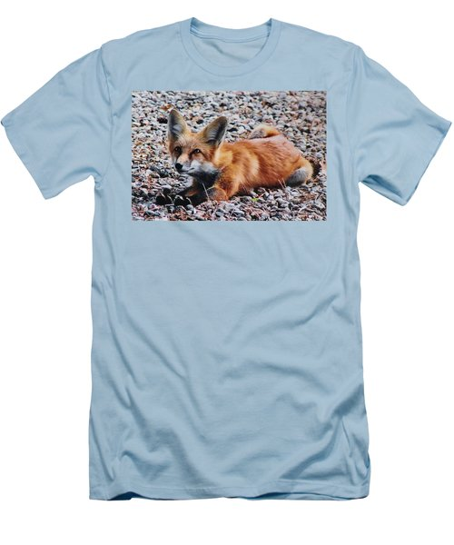 Men's T-Shirt (Slim Fit) featuring the photograph Young Red Fox Watches Squirrel by Diane Alexander
