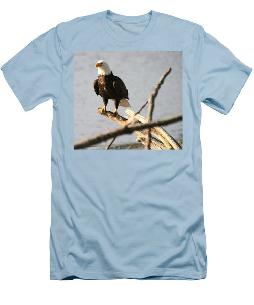 Men's T-Shirt (Slim Fit) featuring the photograph Bald Eagle On Driftwood by Kym Backland