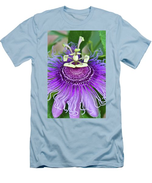 Passion Flower Men's T-Shirt (Slim Fit) by Albert Seger