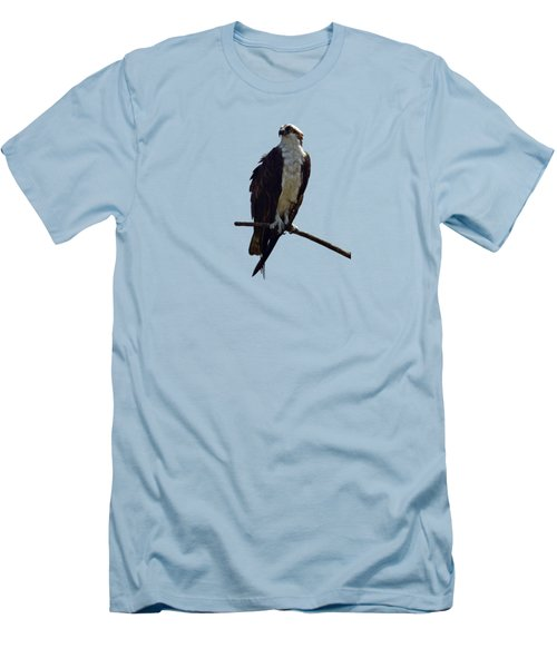 Osprey Men's T-Shirt (Slim Fit) by Deborah Good