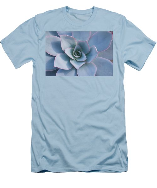 Succulent Beauty Men's T-Shirt (Slim Fit) by Catherine Lau