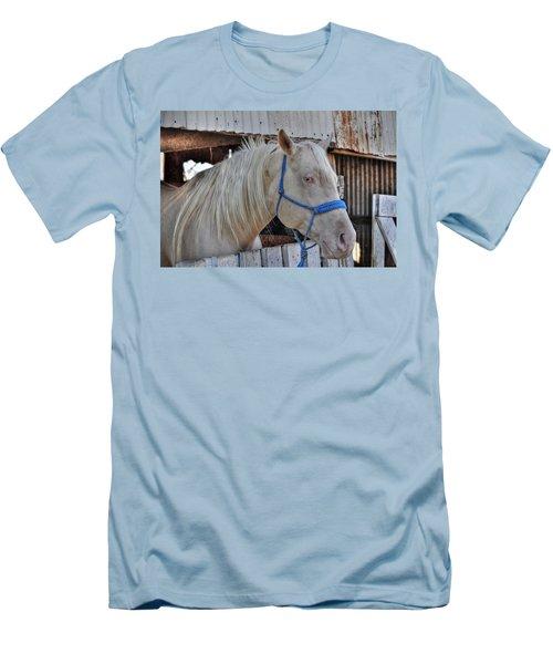 Horse Men's T-Shirt (Slim Fit) by Savannah Gibbs