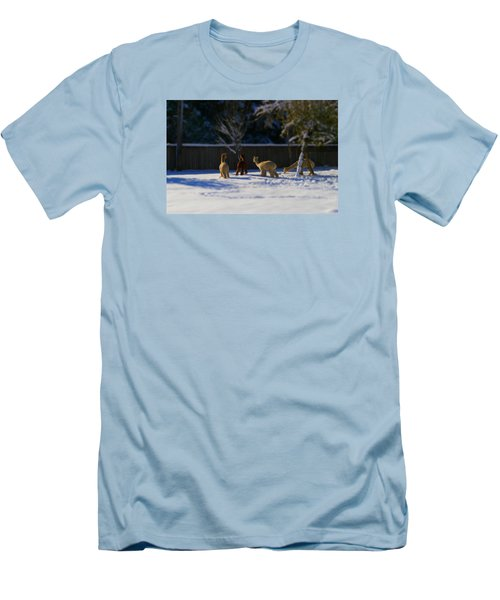 Alpacas In The Snow Men's T-Shirt (Athletic Fit)
