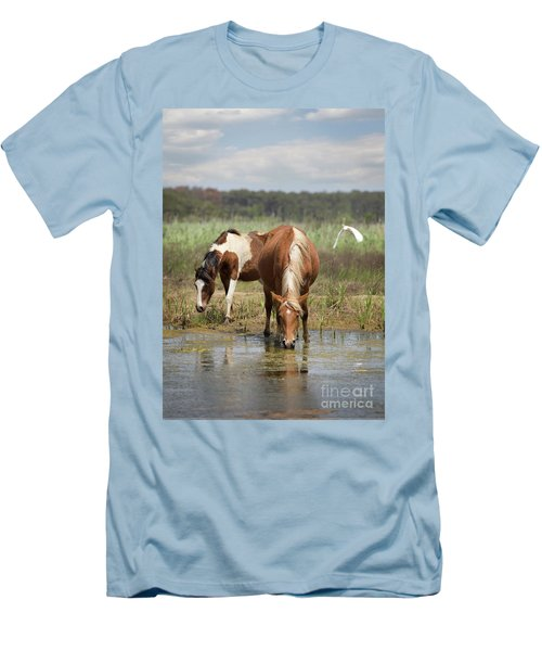 Assateague Pony Pair Men's T-Shirt (Athletic Fit)