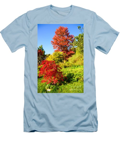 Autumn Colours Men's T-Shirt (Slim Fit) by Colin Rayner