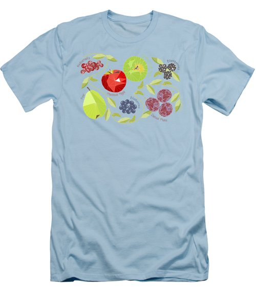 Autumn Fruit Geodesic Men's T-Shirt (Athletic Fit)
