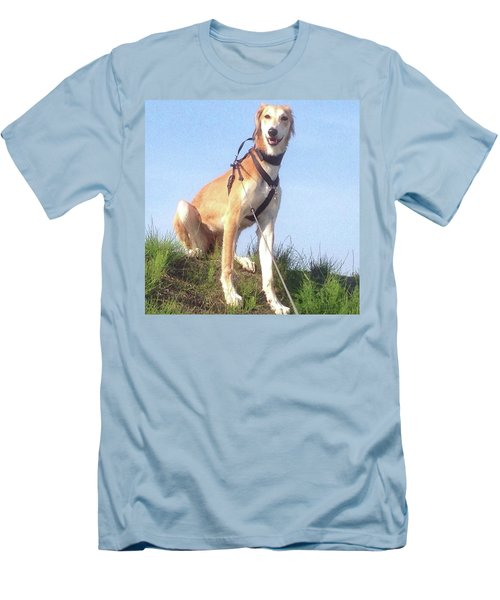 Ava-grace, Princess Of Arabia  #saluki Men's T-Shirt (Athletic Fit)