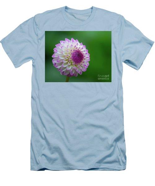 Beautiful Dahlia 1 Men's T-Shirt (Athletic Fit)