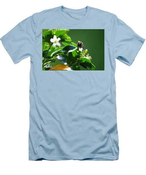 Bee On Jasmine Men's T-Shirt (Athletic Fit)