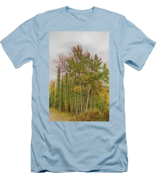 Birch Tree #1 Men's T-Shirt (Athletic Fit)