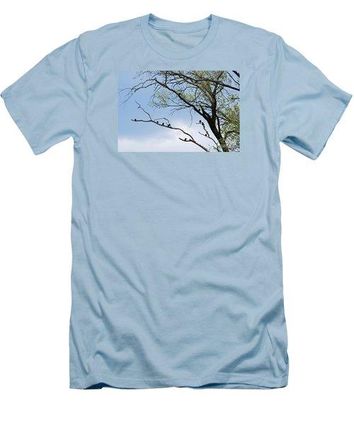 Blackbirds 20120409_221a Men's T-Shirt (Slim Fit) by Tina Hopkins