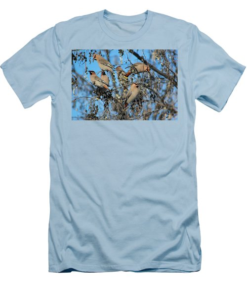 Men's T-Shirt (Slim Fit) featuring the photograph Bohemian Waxwings by Kathy Bassett