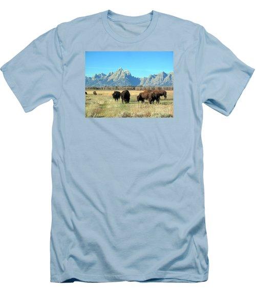 Buffallo  Men's T-Shirt (Slim Fit) by Irina Hays