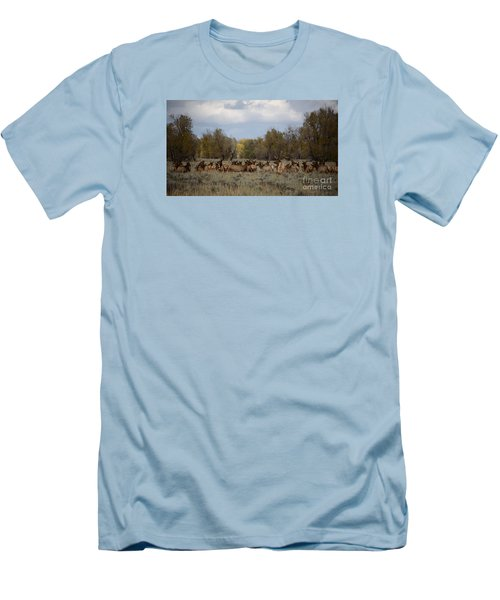 Men's T-Shirt (Slim Fit) featuring the photograph Bull Elk And Harem by Sandy Molinaro