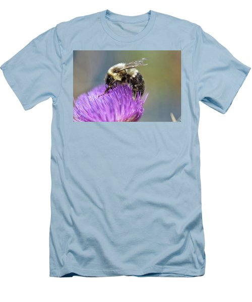 Bumblebee Men's T-Shirt (Slim Fit) by Nikki McInnes