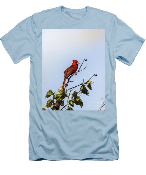 Men's T-Shirt (Slim Fit) featuring the photograph Cardinal On Treetop by Robert Frederick