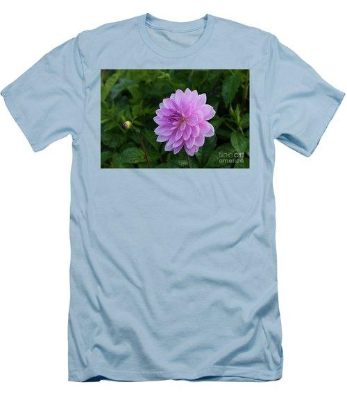 Carmen Bunky 4 Men's T-Shirt (Athletic Fit)