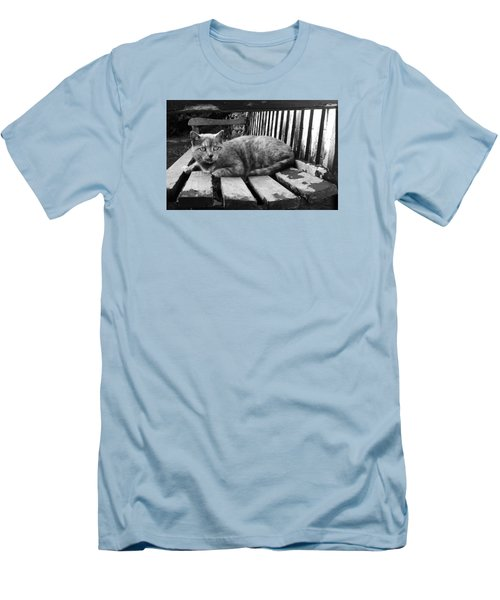Men's T-Shirt (Slim Fit) featuring the photograph Cat On A Seat by RKAB Works