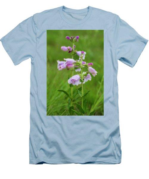 Cobea After Rain Men's T-Shirt (Athletic Fit)