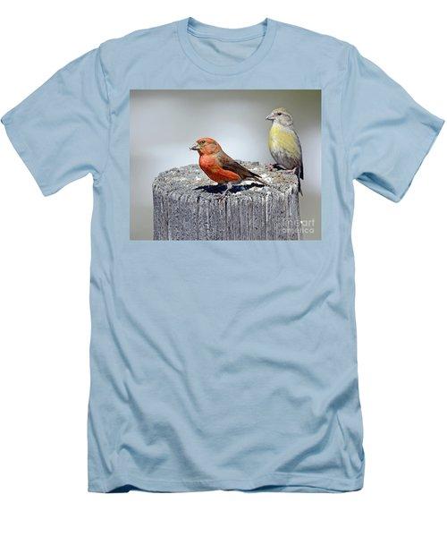 Crossbills Men's T-Shirt (Athletic Fit)