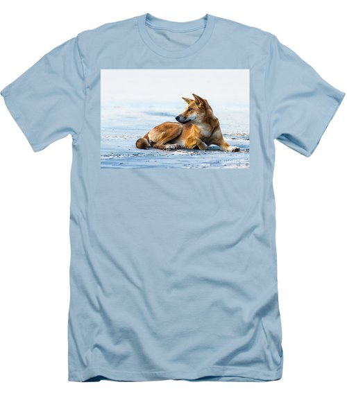 Dingo On Fraser Island Beach Men's T-Shirt (Athletic Fit)