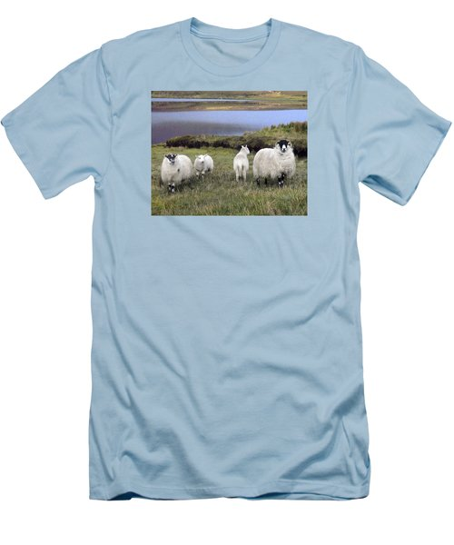 Family Of Sheep Men's T-Shirt (Athletic Fit)