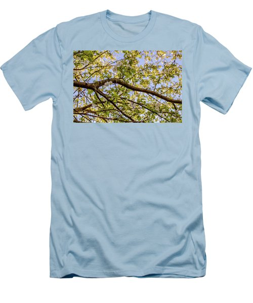 Flowering Crab Apple Men's T-Shirt (Athletic Fit)