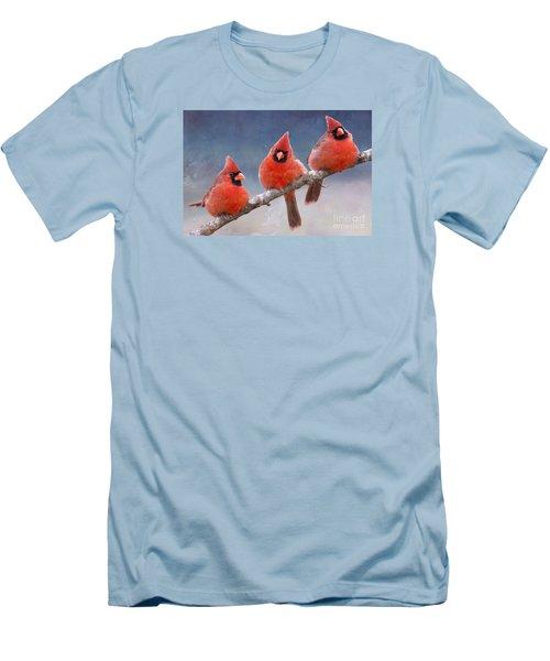Fluffy Cardinal Trio Men's T-Shirt (Athletic Fit)