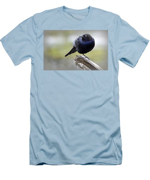 Grackle Resting Men's T-Shirt (Slim Fit) by AJ Schibig