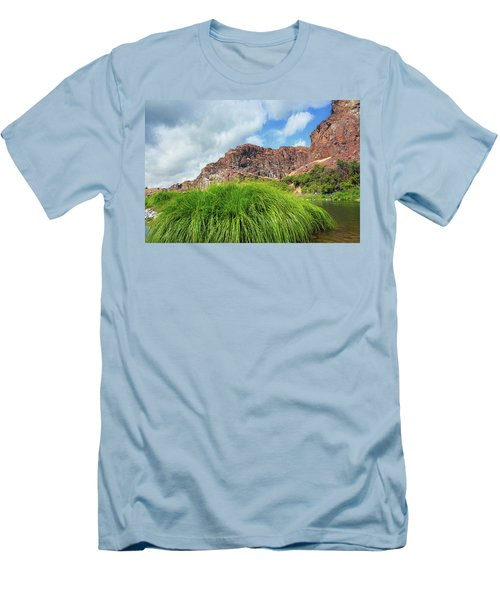 Grass Along John Day River In Central Oregon Men's T-Shirt (Athletic Fit)