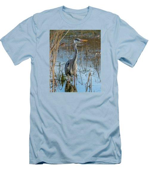 Grey Heron Hunting Men's T-Shirt (Athletic Fit)