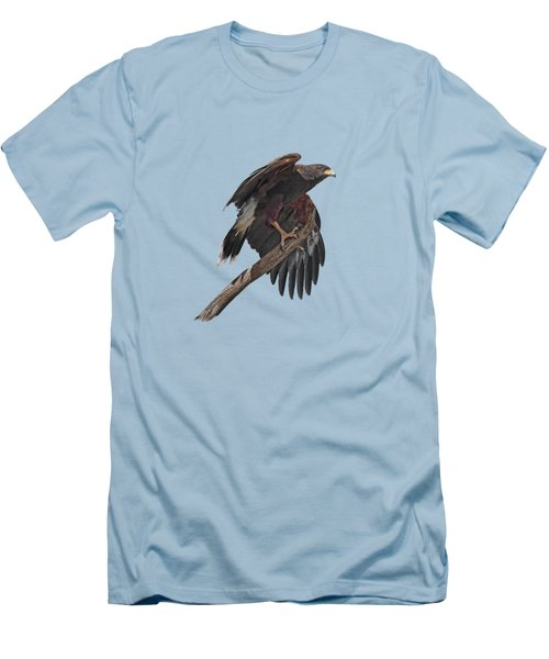 Harris Hawk - Transparent Men's T-Shirt (Slim Fit) by Nikolyn McDonald