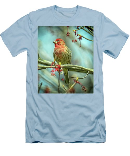 House Finch In Spring Men's T-Shirt (Slim Fit) by Rodney Campbell