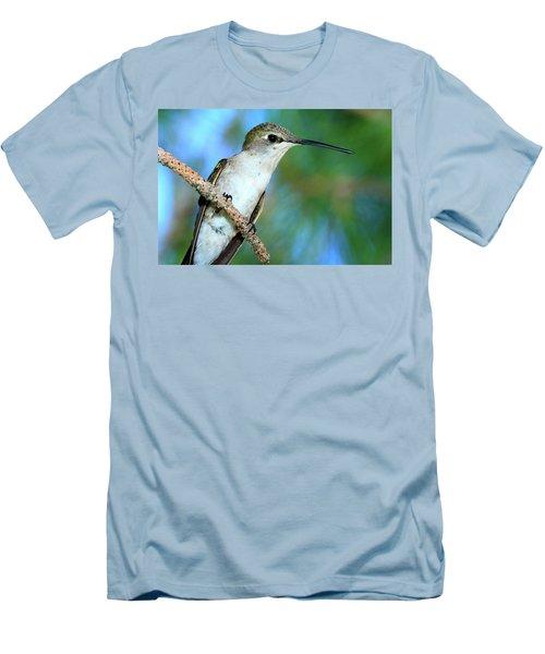 Hummingbird I Men's T-Shirt (Slim Fit) by Paul Marto