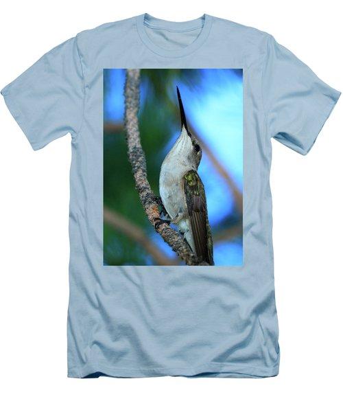 Hummingbird II Men's T-Shirt (Slim Fit) by Paul Marto