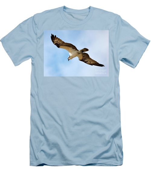 Hunter Osprey Men's T-Shirt (Slim Fit) by Carol Groenen