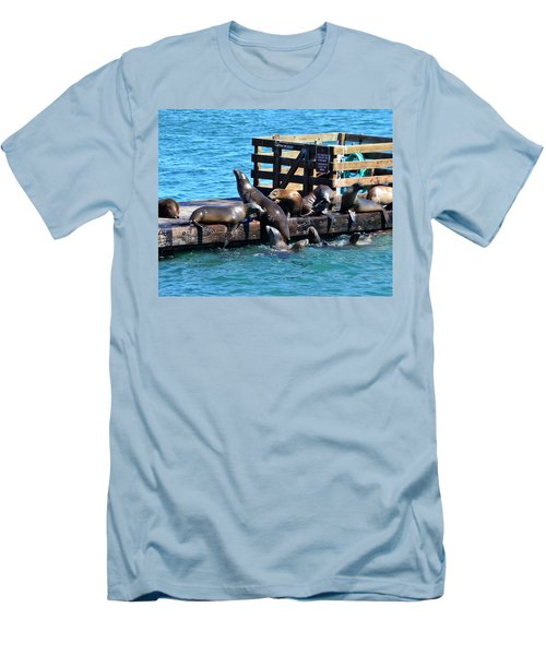 Keep Off The Dock - Sea Lions Can't Read Men's T-Shirt (Athletic Fit)