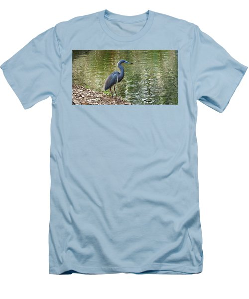 Lesser Blue Heron In Mating Plumage Men's T-Shirt (Slim Fit) by Judy Wanamaker