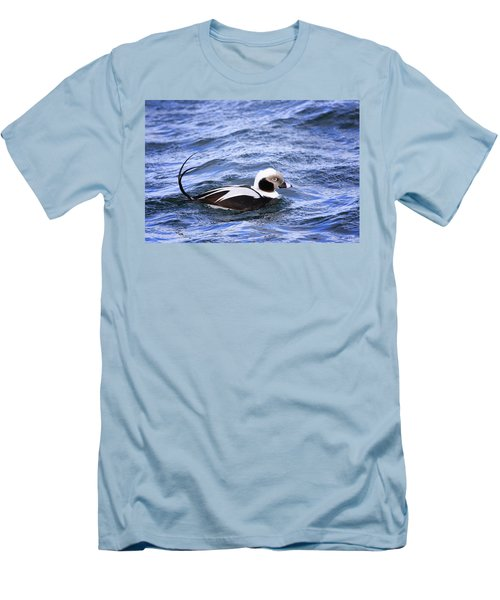 Long-tailed Duck 2 Men's T-Shirt (Slim Fit) by Gary Hall