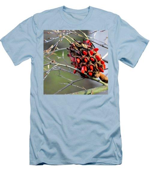 Magnolia Seedhead Men's T-Shirt (Slim Fit) by Tanya Searcy
