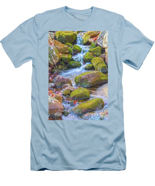 Mossy Stepping Stones Men's T-Shirt (Athletic Fit)