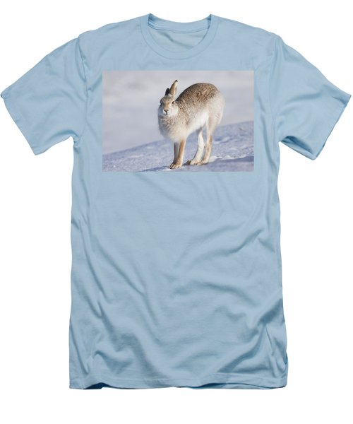 Mountain Hare In The Snow - Lepus Timidus  #2 Men's T-Shirt (Athletic Fit)
