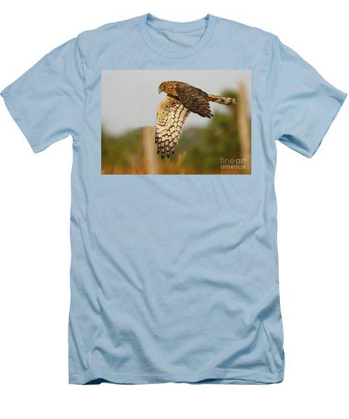 Northern Harrier Flight Men's T-Shirt (Slim Fit) by Myrna Bradshaw