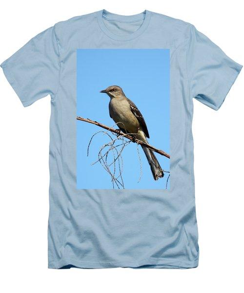 Northern Mockingbird Men's T-Shirt (Slim Fit) by Bruce J Robinson
