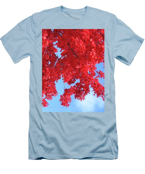 October In The Valley - Fire In The Sky Men's T-Shirt (Slim Fit) by Brooks Garten Hauschild