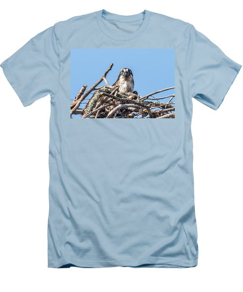 Osprey Eyes Men's T-Shirt (Slim Fit) by Paul Freidlund